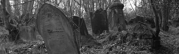 graveyardlandscape.png